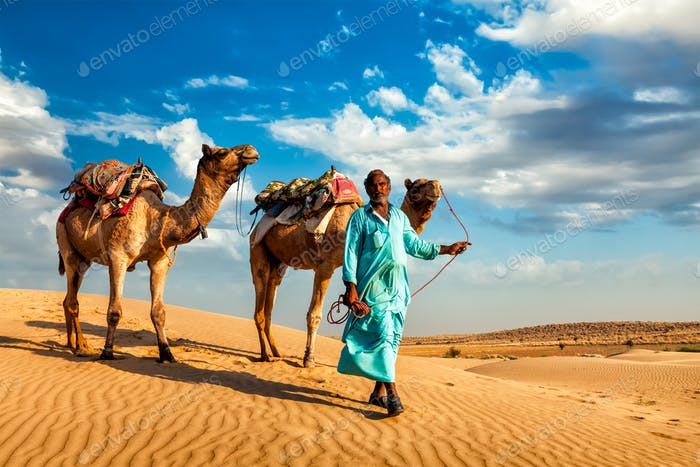 Cameleer camel driver with camels in dunes of Thar desert