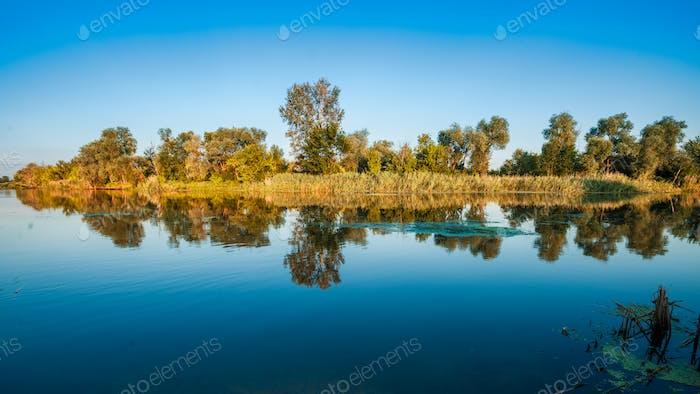 Big tranquil lake near green woods