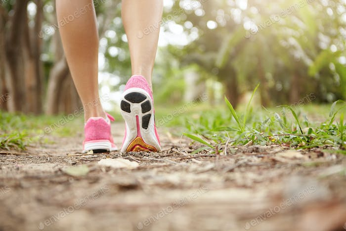 Cropped shot of athlete girl in pink running shoes hiking in forest on sunny day. Fit slim legs of s