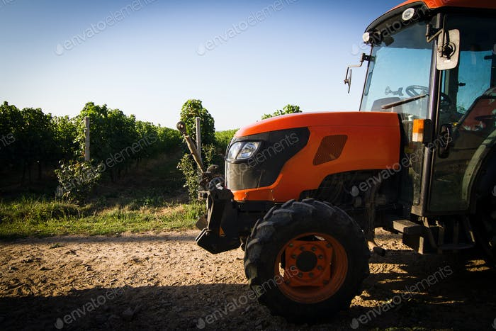 closeup of red tractor in front of vineyard rows