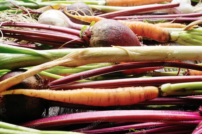 Vegan background of fresh organic beetroots green garlic and car
