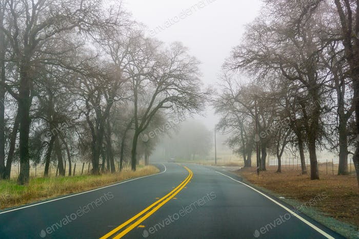 Driving on a day with heavy fog and low visibility, California