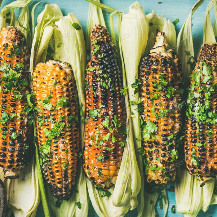 Flat-lay of grilled sweet corn with spices, square crop