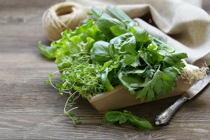 Fragrant Herbs
