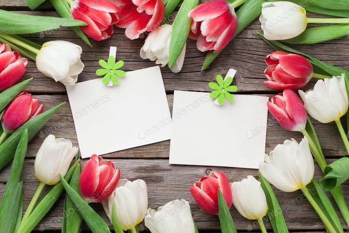 Цветные тюльпаны и фоторамки