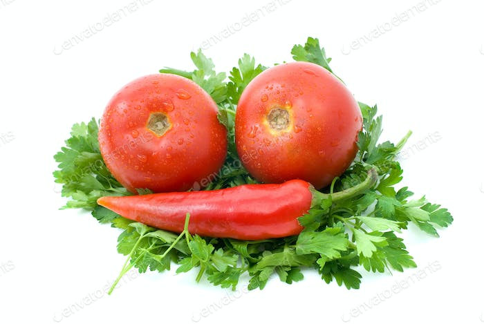 Two ripe tomatoes and red hot chili pepper over some parsley