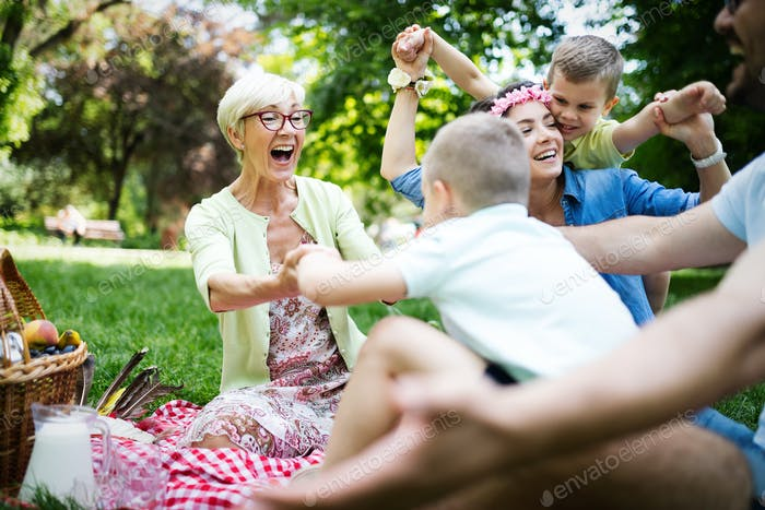 Multi generation family enjoying picnic in a park