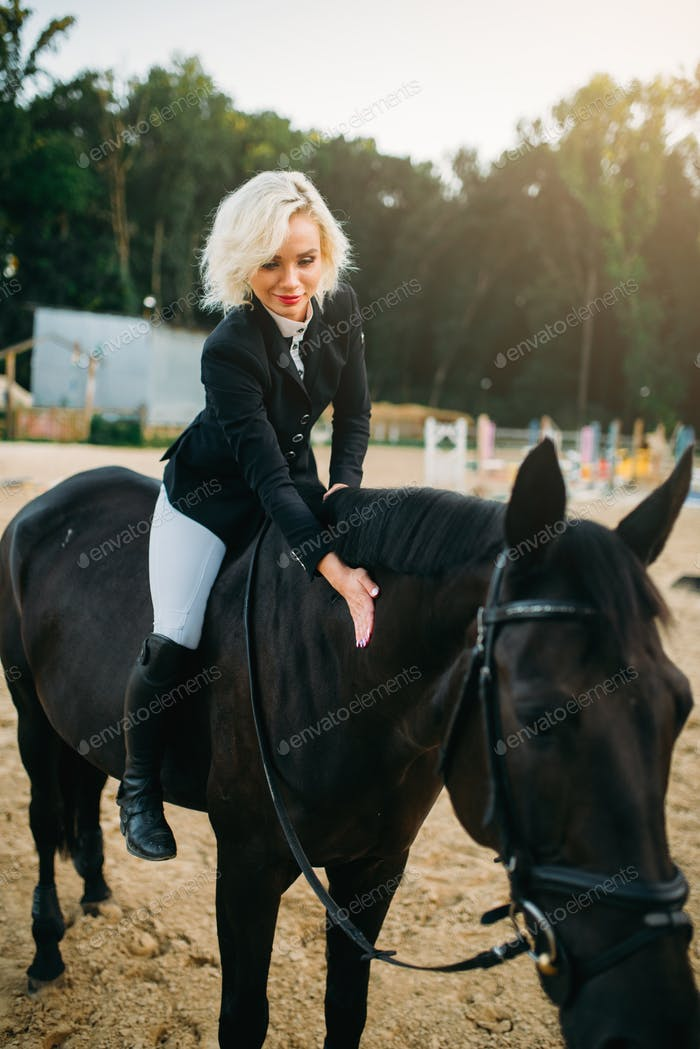 Equestrian sport, woman poses on horseback
