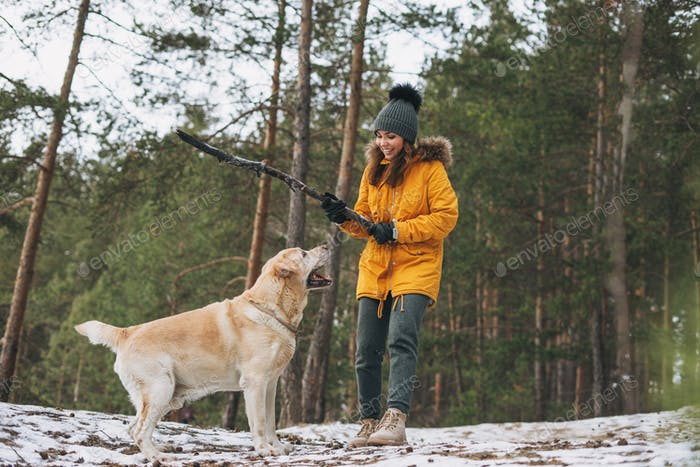 Young woman in yellow jacket trains big kind white dog Labrador in winter forest