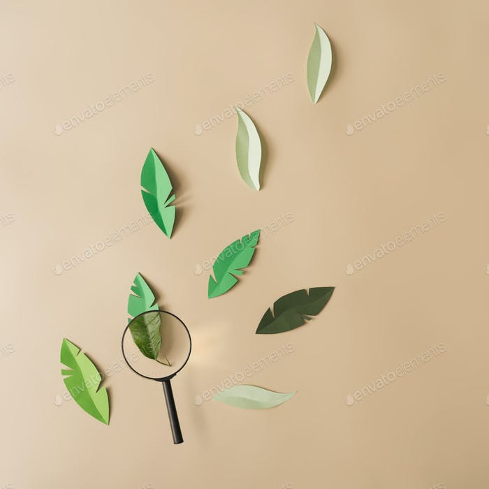 Paper leaves with magnifying glass. Minimal nature concept. Flat lay.