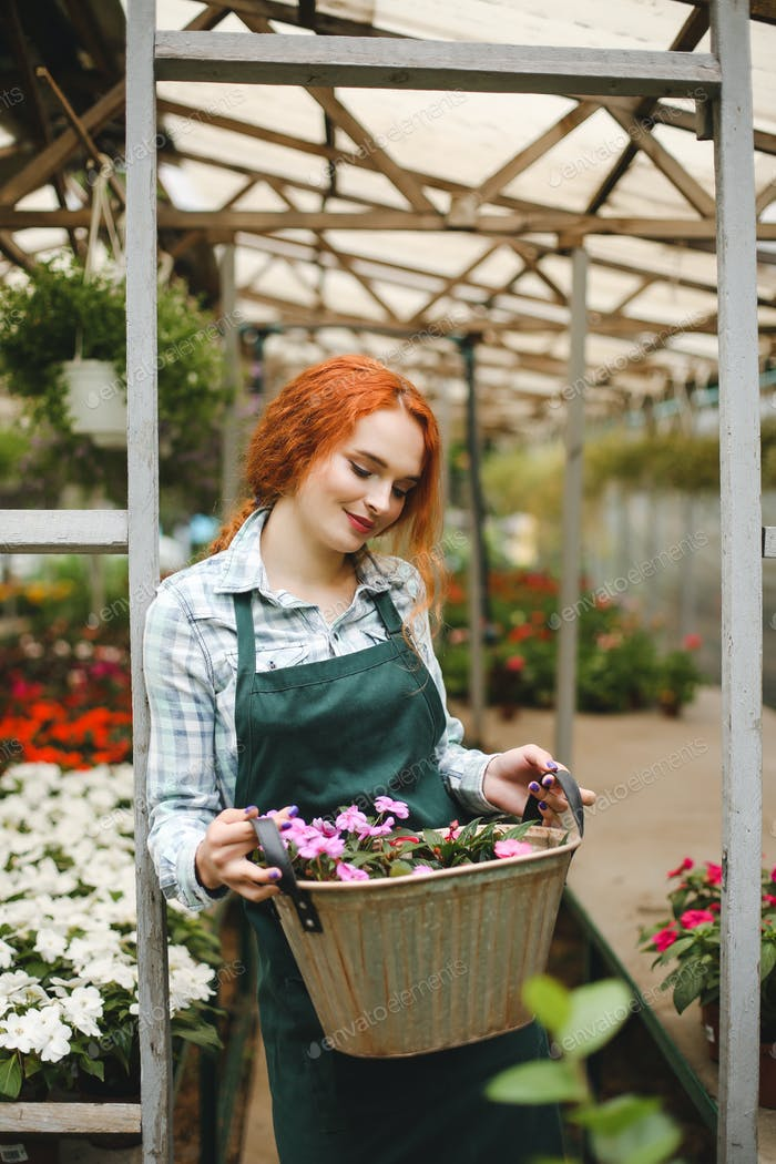 Beautiful florist in apron standing with metal basket with flowe