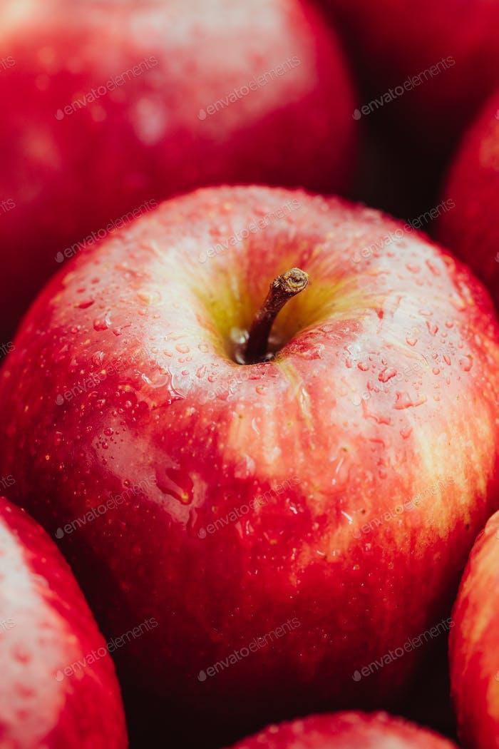 Ernte von reifen Äpfeln Sorte Red Delicious. Food-Hintergrund, Makrofotografie.