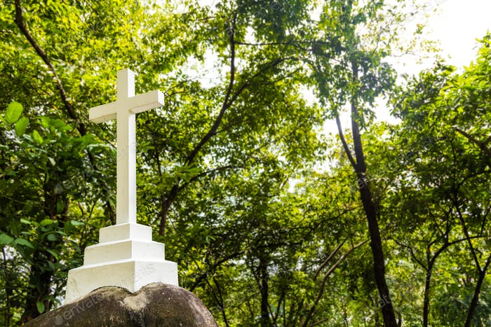 Christian cross crucifix structure stationed within greenery nat