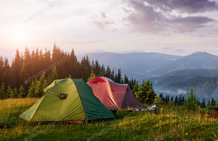 Tourist tents are in the green misty forest at the mountains at sunset. Carpathian of Ukraine Europe