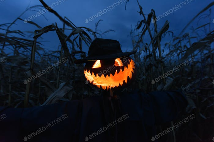 Scary pumpkin scarecrow in a hat
