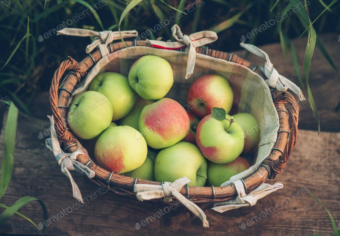 Apples in a wicker basket.