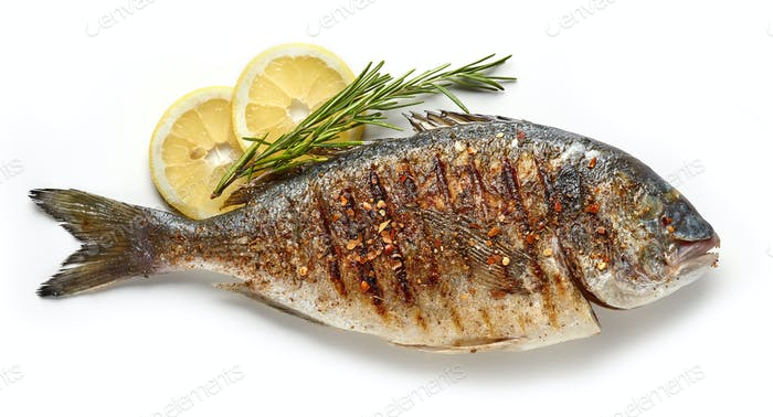 grilled fish on white background