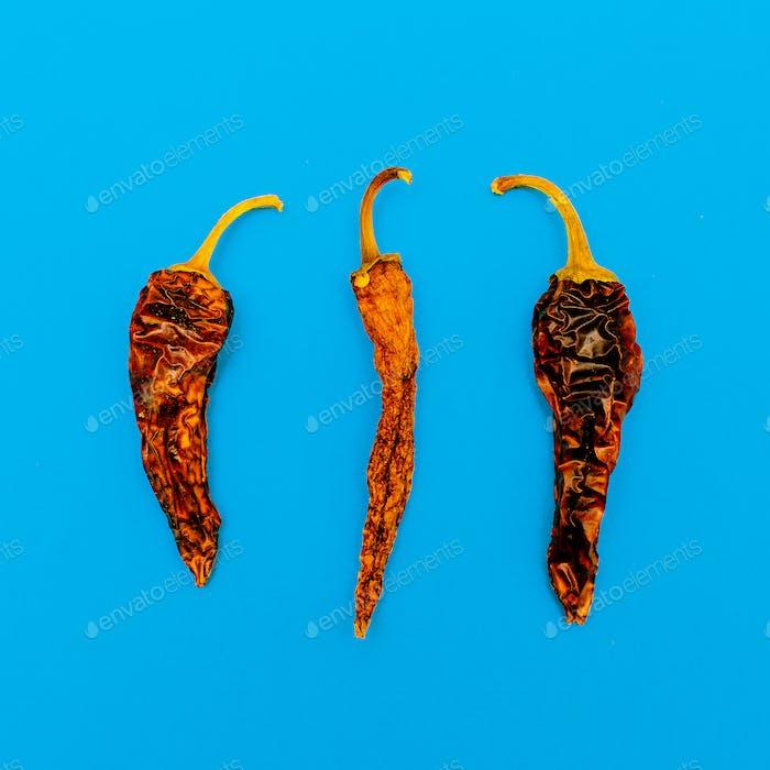 Dried Chile pepper. Minimal art design