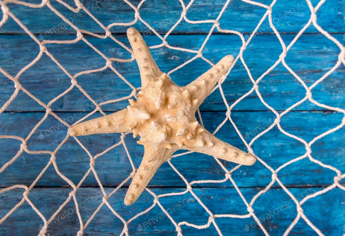 Starfish in fishing net