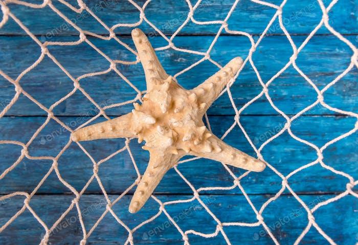 Estrella de mar en red de pesca