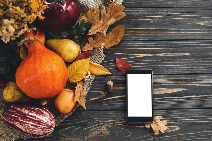 Phone with empty screen and beautiful pumpkin with bright autumn leaves