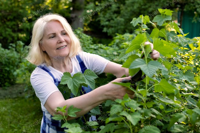 blonde woman cutting trimming branches doing garden work