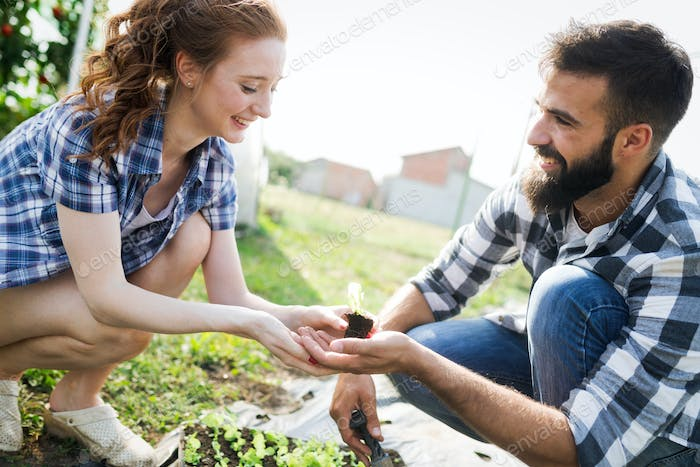 Two attractive young women working in greenhouse and planting seeds