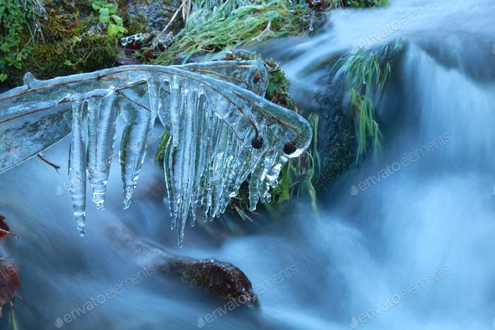 icicles on grass by river