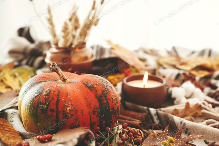 Hygge lifestyle, autumn mood. Happy Thanksgiving. Cozy inspirational image