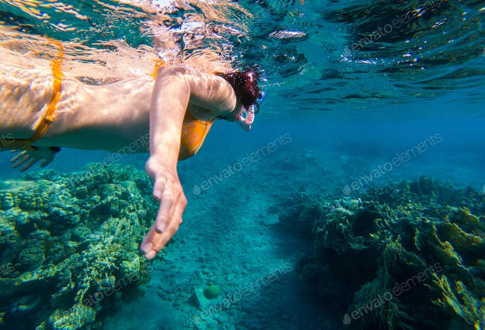 Woman snorkeling above coral reef