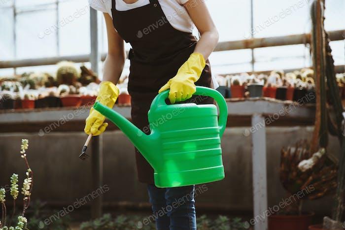 Dame stehend im Gewächshaus in der Nähe von Pflanzen mit Hand gießen Topf.