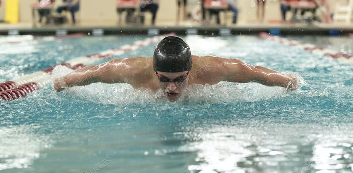 Young man swimming the butterfly in a competition