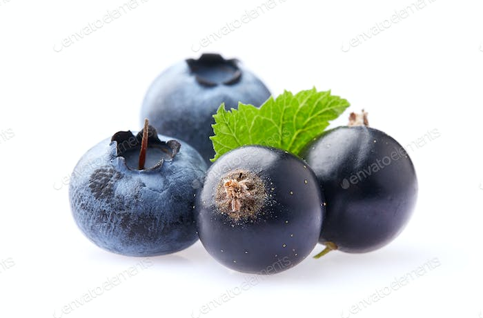 Currant with blueberry