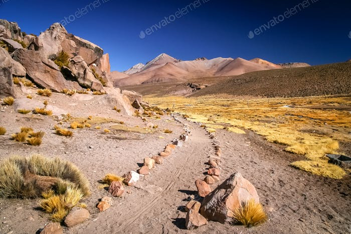 Walking trail in Park Lauca