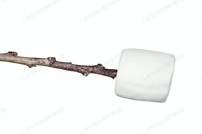 Marshmallow on a stick