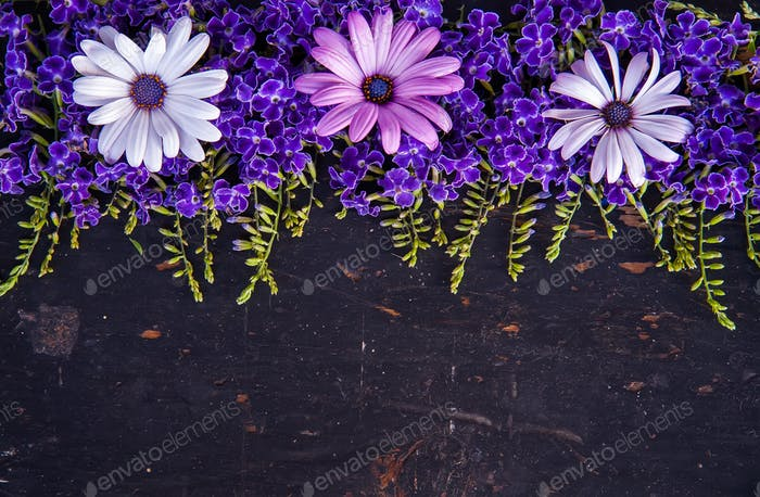 Creative layout made of flowers and on the black wooden backgraund