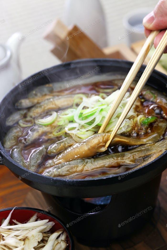 Dojo nabe, dojo loach hot pot, japanese traditional food