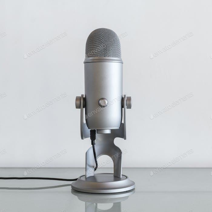 Stainless steel studio microphone