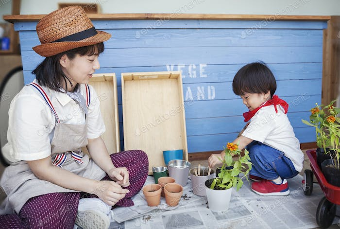 Japanese woman wearing hat and boy sitting outside a farm shop, planting flowers into flower pots.