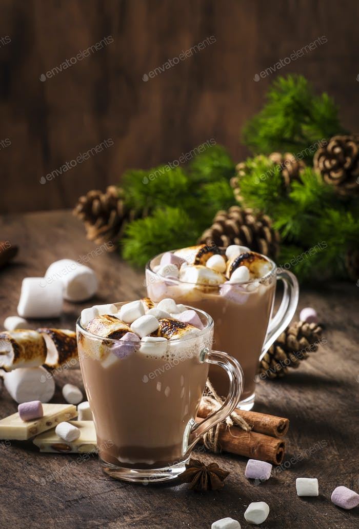 Hot cocoa or chocolate with marshmallow