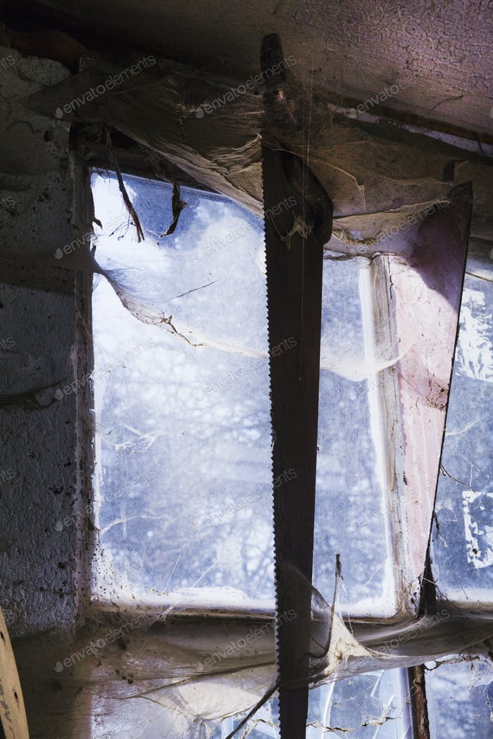 A hand saw hanging in front of a window covered in dusty cobwebs in carpentry workshop.