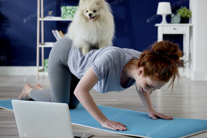 Dog disturbing woman in home exercising