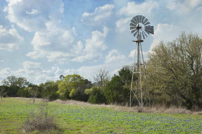 Old Windmill with Trees and Bluebonnets in the Texas Hill Country