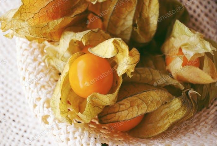 Beautiful macro close-up of a orange tasty fruit