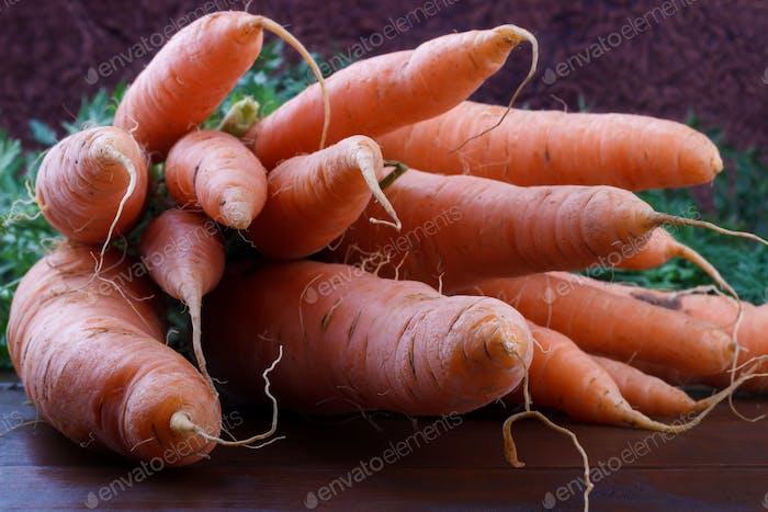 manojo de zanahorias