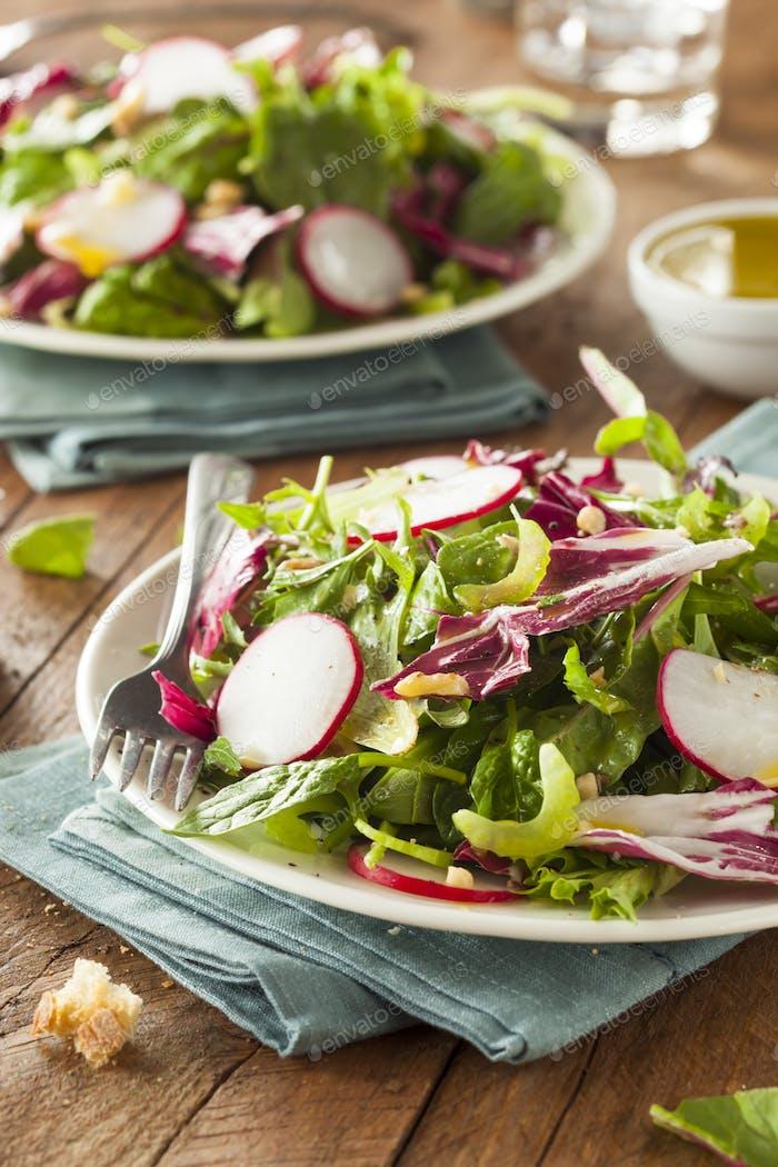 Healthy Homemade Herb Salad