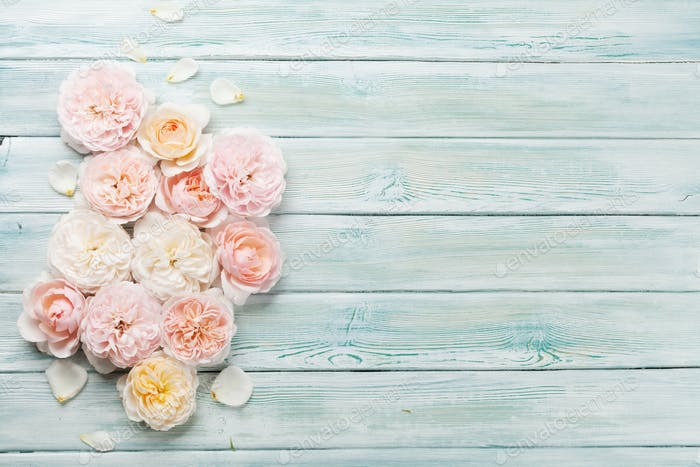 Garden rose flowers on wooden background