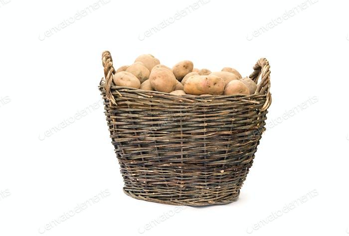 basket of potato