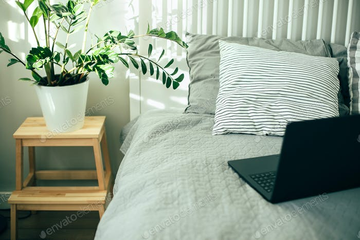 House plant green ficus on wooden stand, laptop on bed. Scandinavian interior, lifestyle concept