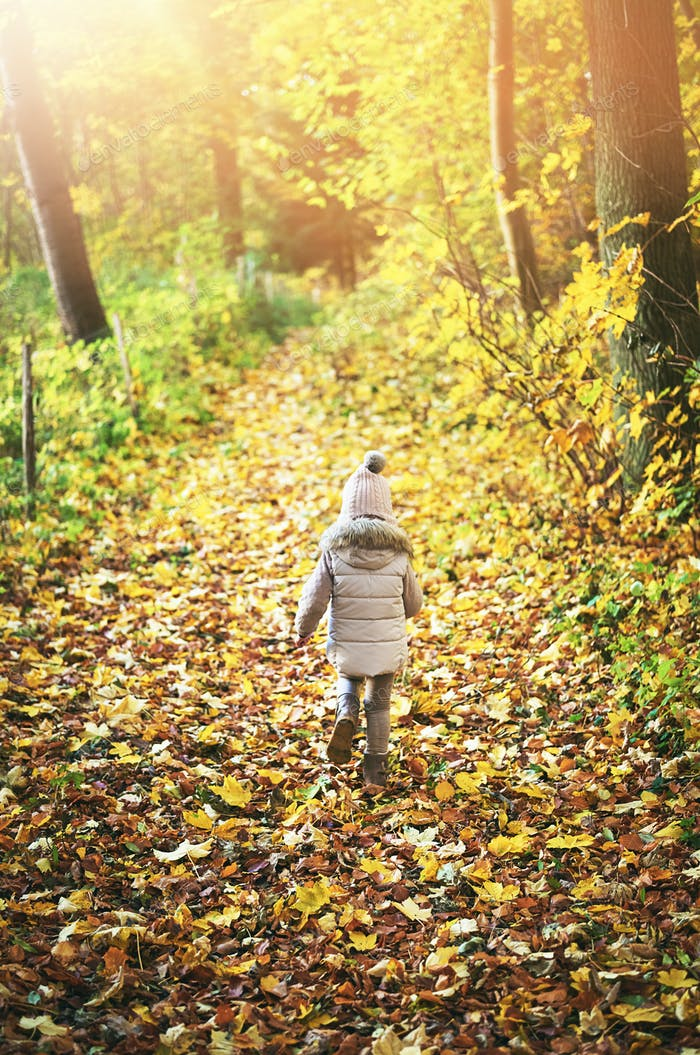 Little girl walking away on autumn leaves